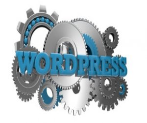Wordpress SEO 300x250 - Homepage