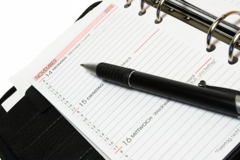 Weekly SEO Diary